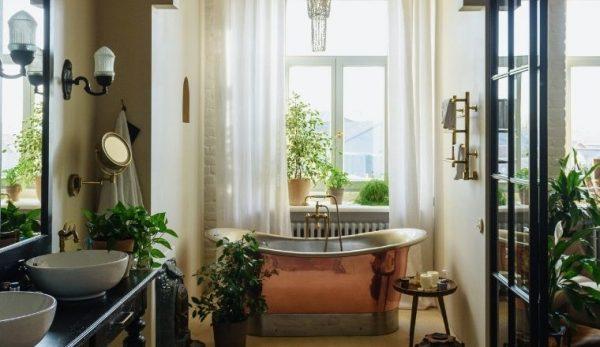 So dekorieren Sie das Badezimmer mit Pflanzen: Hier sind die am besten geeigneten Sorten