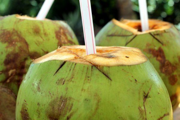 Kokoswasser: Was ist das und wie kann es für Körper und Haare verwendet werden