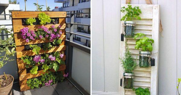 Vertikaler Garten: So haben Sie einen Gemüsegarten auf Ihrem Balkon